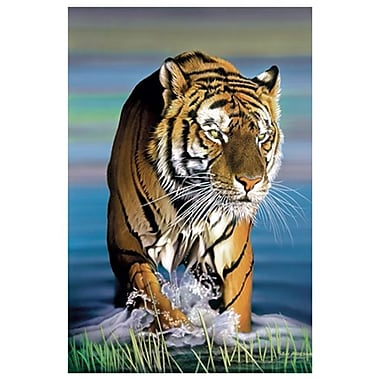 Tiger in Water by Messom, Canvas, 24