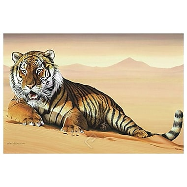 Tiger in Sand by Messom, Canvas, 24