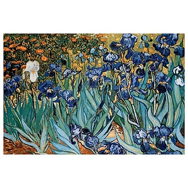 Irises by Van Gogh, Canvas, 24
