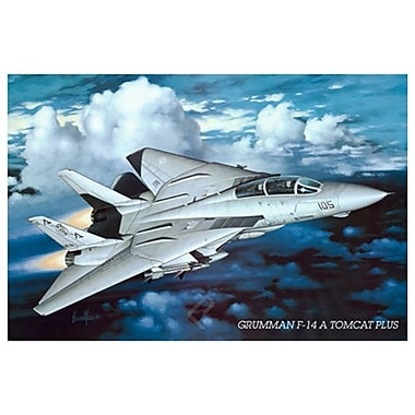 Airplane Grumman Tomcat F-14, Stretched Canvas, 24