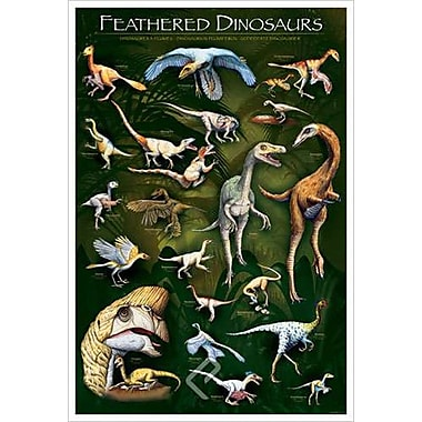 Feathered Dinosaurs 1, Stretched Canvas, 24
