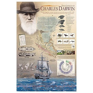 The Genius of Charles Darwin, Stretched Canvas, 24