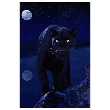 Black Panther in Moonlight, Stretched Canvas, 24