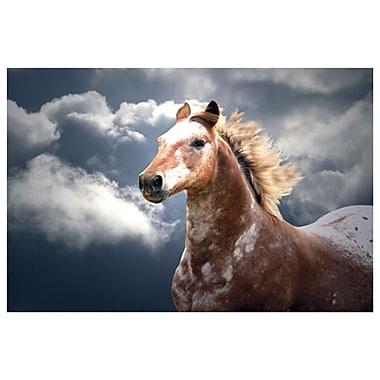 Cloud Runner de Laird, toile, 24 x 36 po
