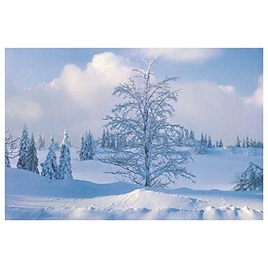 Arbre d'hiver, toile étirée, 24 x 36 po
