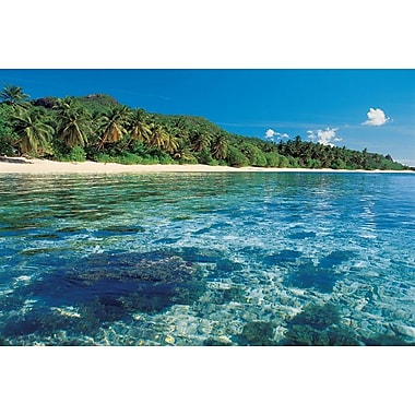 Tropical Sea Beach Rainforest, Stretched Canvas, 24