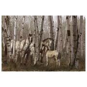 Birchwood Family de Hunziker, toile, 24 x 36 po