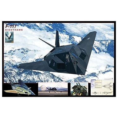Avion F-117 Nighthawk, toile tendue, 24 x 36 po