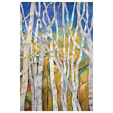 White Birches Medley by Pitts, Canvas, 24
