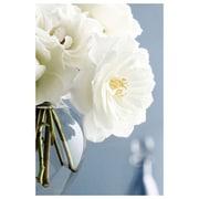 Bouquet de roses blanches par Zalewski, toile, 24 x 36 po