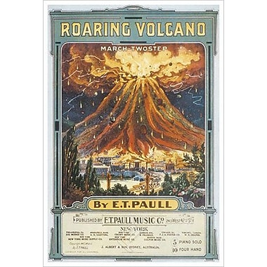 Roaring Volcano by Song, Canvas, 24