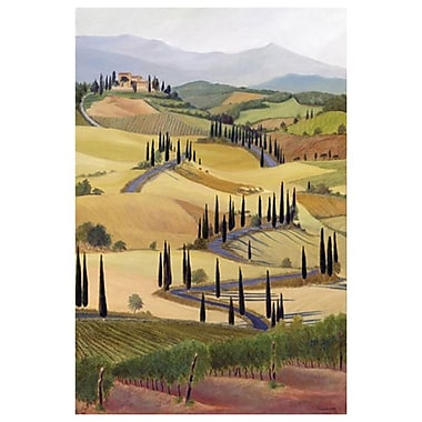 Tuscany 2 by Samson, Canvas, 24