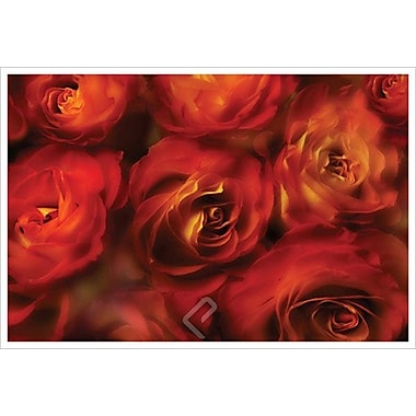 Roses Are Red by Magus, Canvas, 24