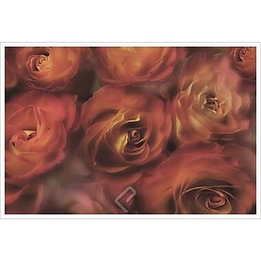 Roses antiques de Magus, toile, 24 x 36 po