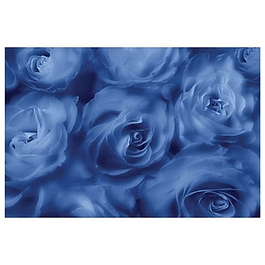 Roses Are Blue by Magus, Canvas, 24