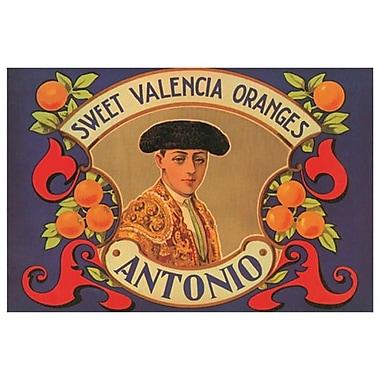 Sweet Valencia Oranges Antonio, toile, 24 x 36 po