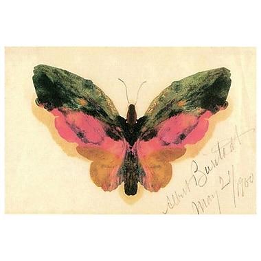 Butterfly de Bierstadt, toile, 24 x 36 po