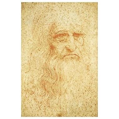 Autoportrait de Da Vinci, toile, 24 x 36 po