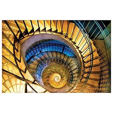 Spirals by Davis, Canvas, 24