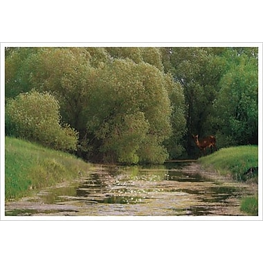 Doux printemps de Hunziker, toile de 24 x 36 po