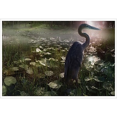 Mystic Heron by Hunziker, Canvas, 24