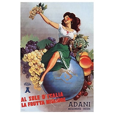 Fruits Adani, toile, 24 x 36 po