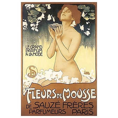 Fleurs de Mousse de Sauze, Stretched Canvas, 24