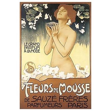 Fleurs de mousse de Sauzé frères, toile tendue, 24 x 36 po
