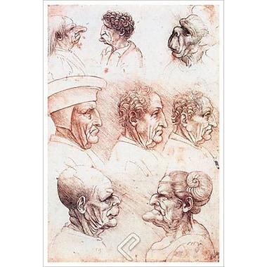 Grotesque Heads by da Vinci, Canvas, 24