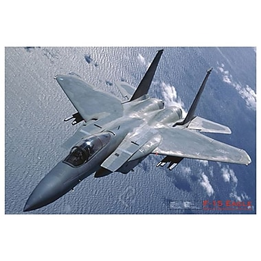 Airplane-F-15 Eagle, Stretched Canvas, 24