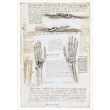 Squelette de la main de Da Vinci, toile, 24 x 36 po
