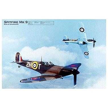 Avion Spitfire Mk 9, toile tendue, 24 x 36 po