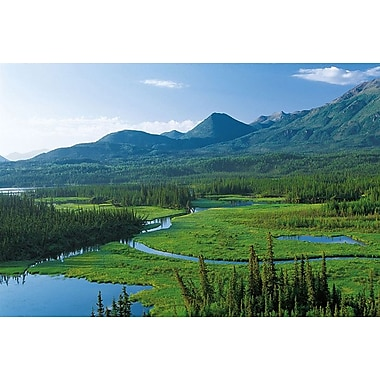 Tok Cut, Alaska, toile tendue, 24 po x 36 po