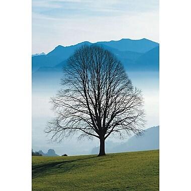 Matin brumeux dans la montagne, toile tendue, 24 x 36 po