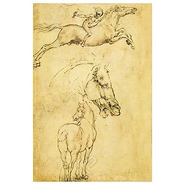 Croquis de chevaux de da Vinci, toile, 24 x 36 po