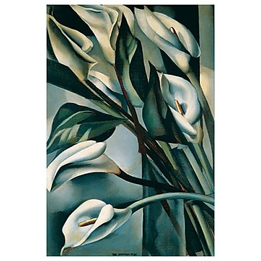 Arums I by Lempicka, Canvas, 24