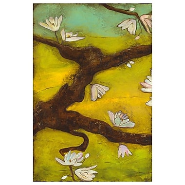 Magnolia en fleurs et nid 1 de Hempel, toile, 24 x 36 po