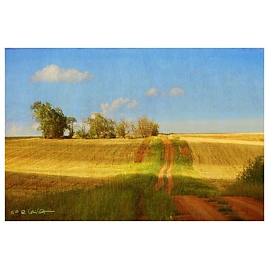 Route vers la vieille maison de Vest, toile, 24 x 36 po