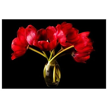 Red Tulips Glass Vase by Zalewski, 24