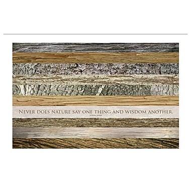 La sagesse de la nature d'après Juvénal, toile tendue, 24 x 36 po
