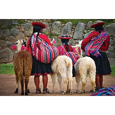 Peruvian Indios with Lamas, Stretched Canvas, 24