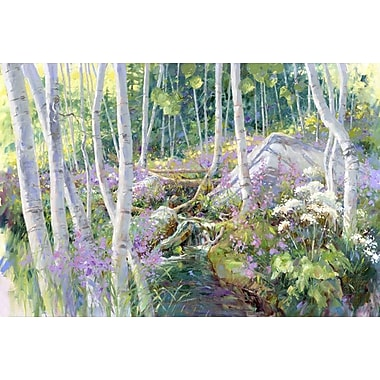 Aspen Glade by Pollard, Canvas, 24