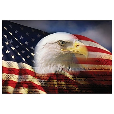 Bald Eagle and American Flag, Stretched Canvas, 24