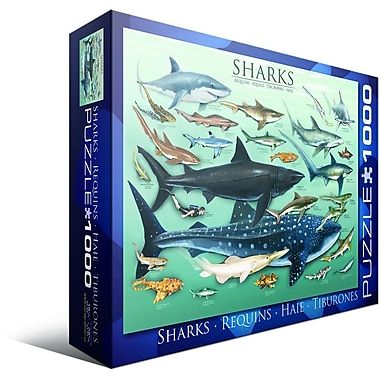 Sharks Puzzle, 1000 Pieces