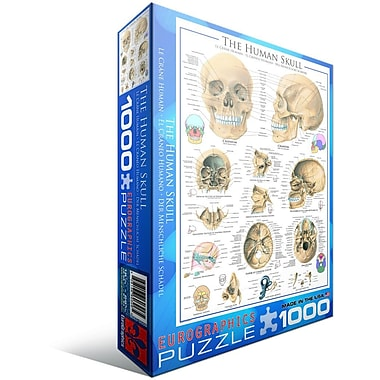 Human Skull Puzzle, 1000 Pieces