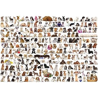 Le monde des chiens, casse-tête de 2000 morceaux