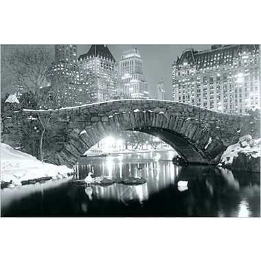 New York Winter Central Park Poster, 24