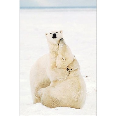 Playful Polar Bears Poster, 24