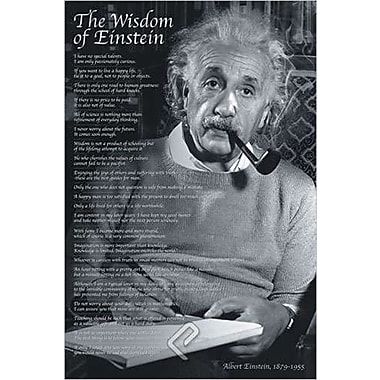 The Wisdom of Einstein Poster, 36
