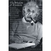 """The Wisdom of Einstein Poster, 36"""" x 24"""""""